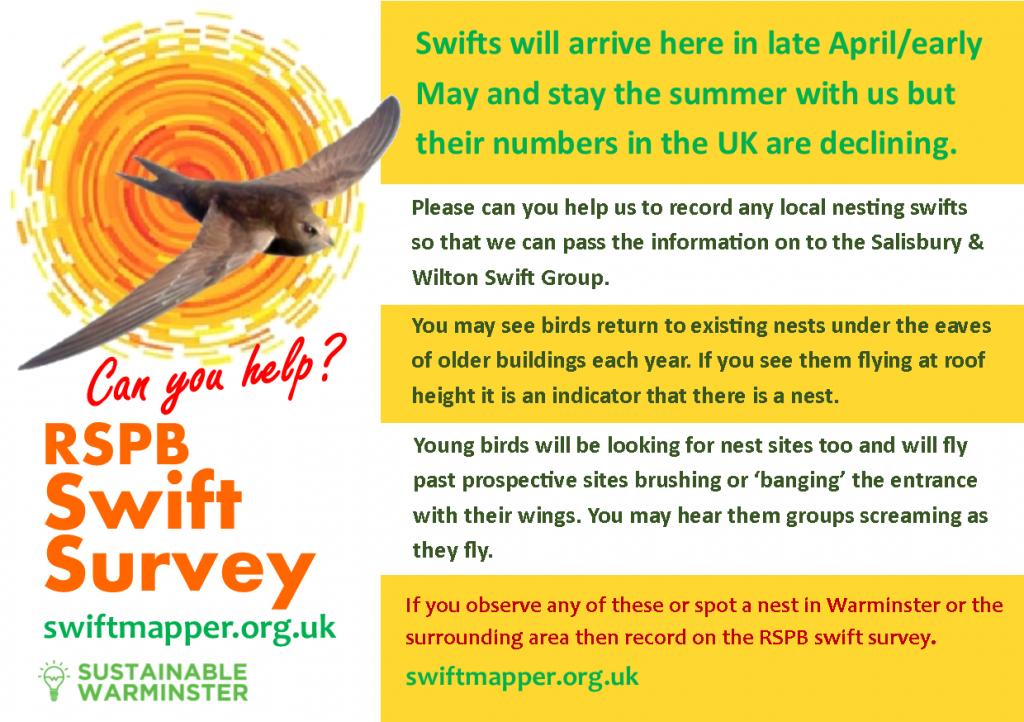 RSPB Swift Survey poster